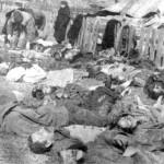 Posible pronunciamiento conjunto sobre polacos masacrados por guerrilleros ucranianos durante la 2GM