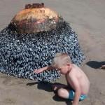 En Gales, inocentes niños juegan con mina de la Segunda Guerra Mundial después de ser varada en la playa