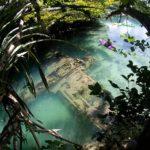 Encuentran un avión de la Segunda Guerra Mundial, bajo el agua, en las Palau