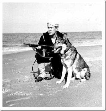 perros-marina