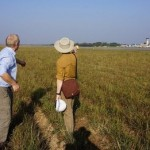 Arqueólogos no creen que haya Spitfires enterrados en Birmania