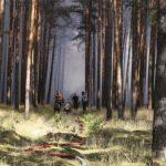 Los fuegos forestales en Alemania pueden hacer estallar las bombas activas enterradas en los bosques