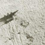 Encuentran otro P-38 aterrizado de emergencia en Groenlandia en 1942