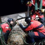 Pesquero de arrastre captura bomba alemana de 1 tn en costa francesa