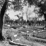 Recordando la Batalla de Ortona en Italia