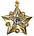 Estrella de Mariscal de la URSS